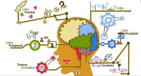 Avaliação neuropsicológica; avaliação psicológicas