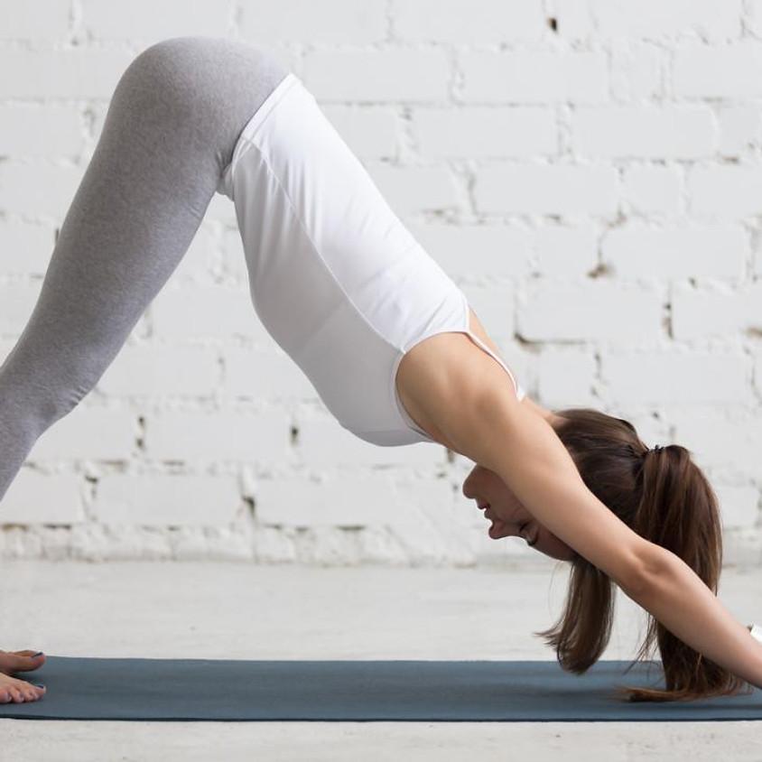 Sessões semanais Hatha Yoga - 4f | 19h00