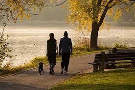 8 Benefícios da caminhada