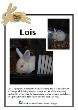 Lois .jpg