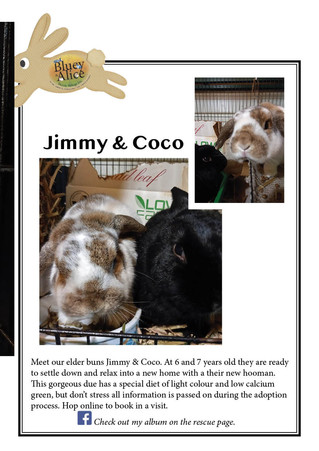 Jimmy & Coco