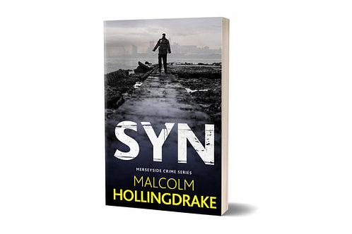 Syn by Malcolm Hollingdrake