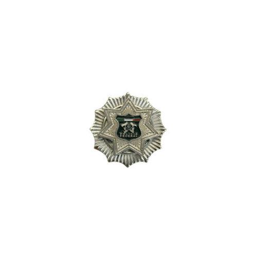Grado Metálico Inspector General