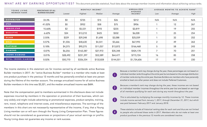 income disclosure statement.png
