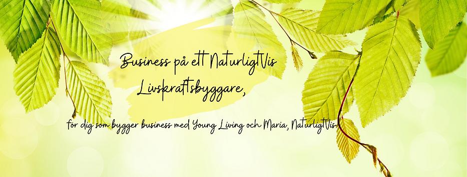 Business, NaturligtVis (3).png