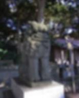 RIMG13541.jpg