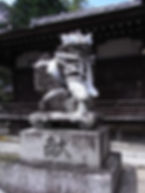 RIMG13711.jpg