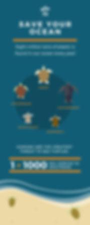 Marine Conservation Sea Turtle Infograph