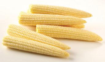 Pickled Mini Corn Cobs