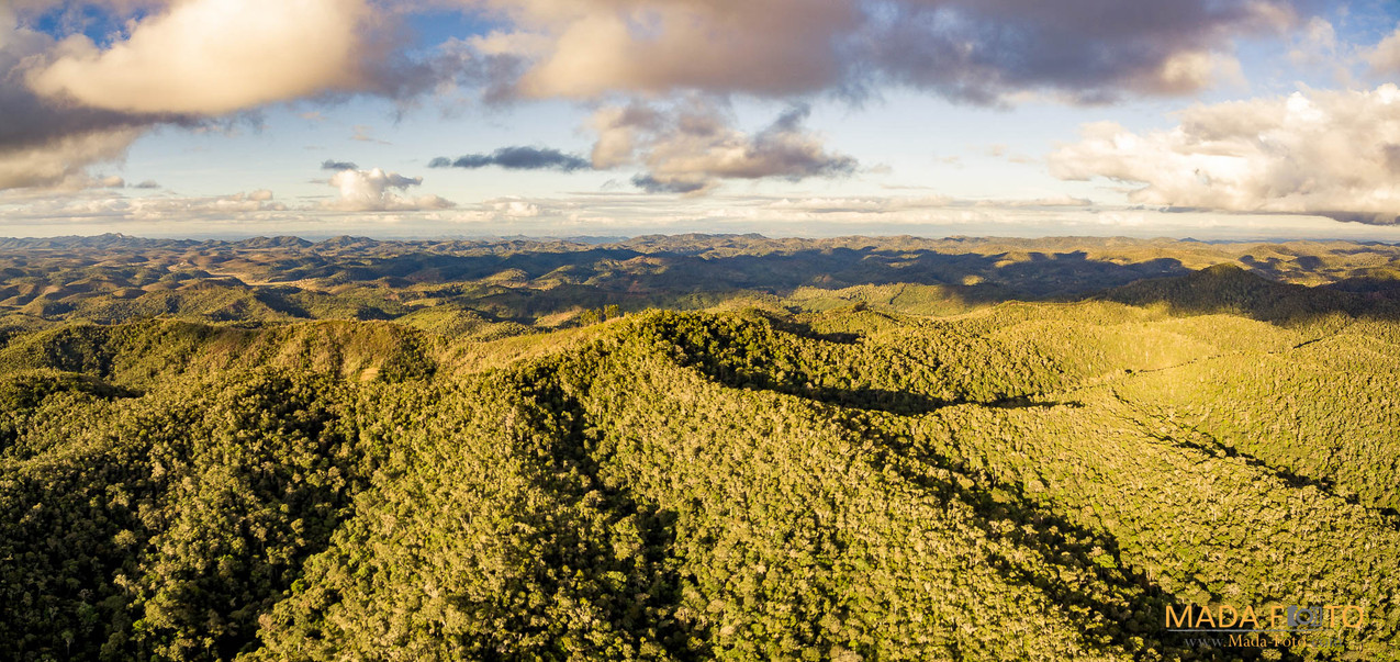 Drone Saha Forest Camp-0014-HDR-Pano