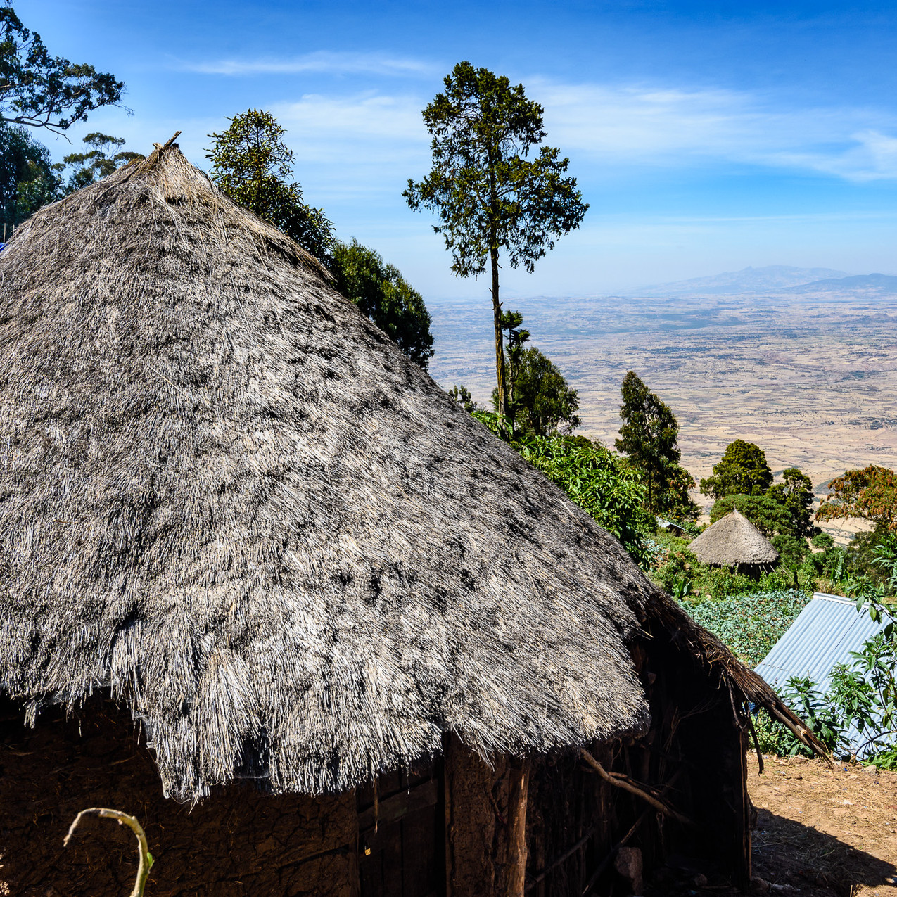 2018Around Addis22351