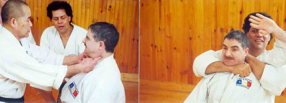 2001 chinen5.jpg