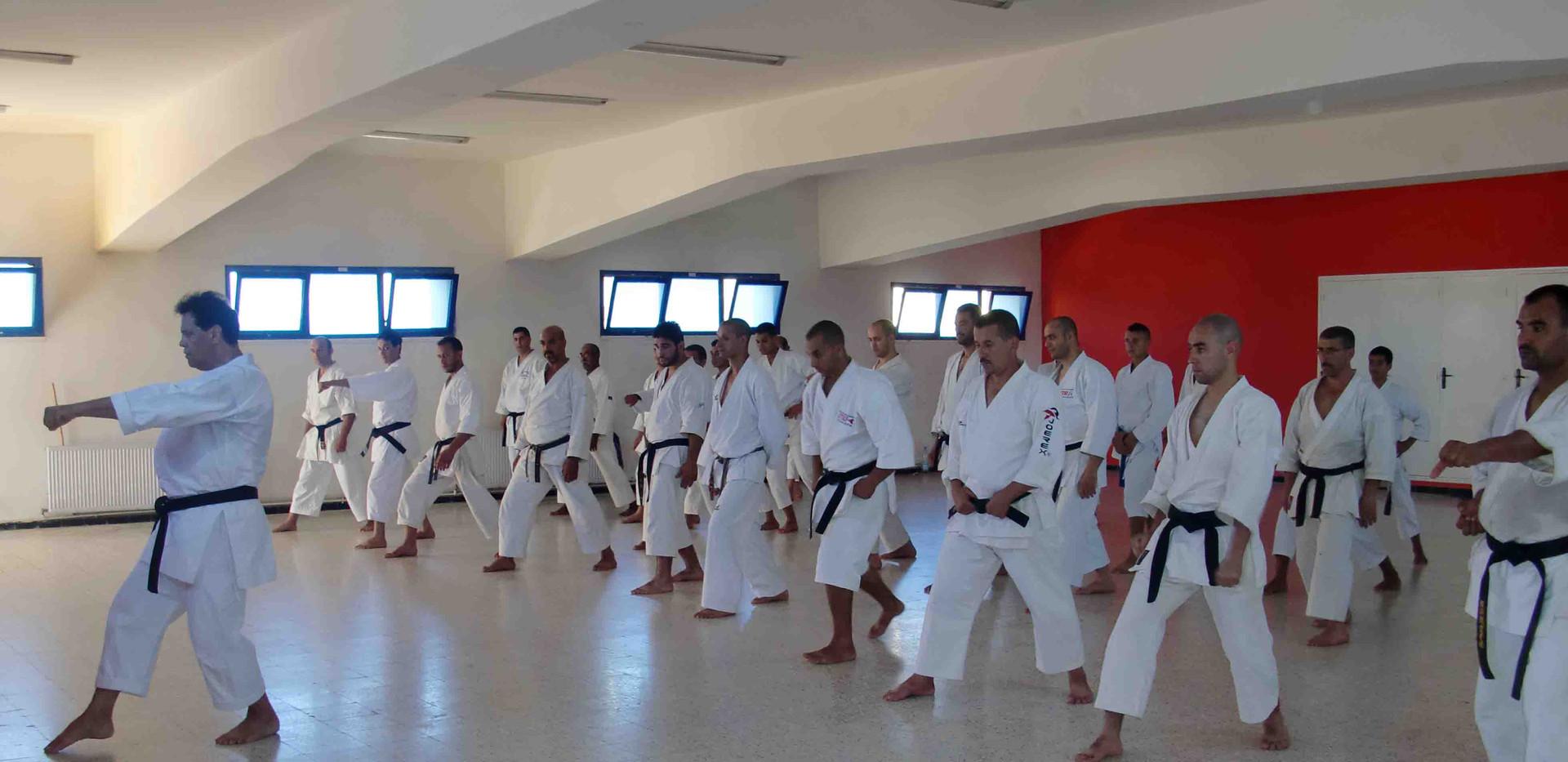 2010 algerie1.jpg