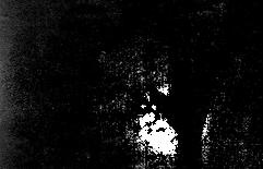 手のハーフトーン画像