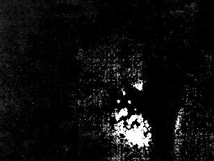 Ver a una sombra observarte