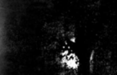 Medios tonos imagen de una mano
