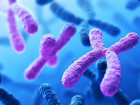 Down Syndrome: The Super Genome