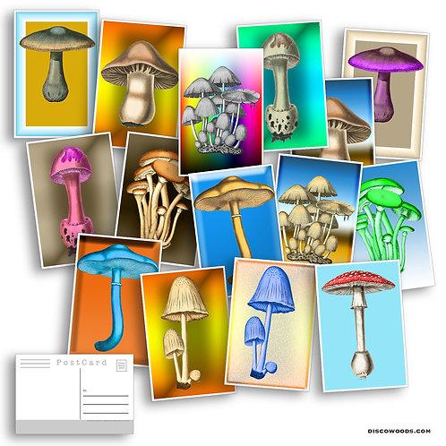 Magical Mushroom Postcard Set - 20 Postcards - Psychedelic - Nature - Scrapbooki