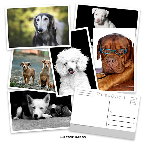 Dogs - Postcard set - 31 post cards - Dogs and Puppies - Scrapbooking