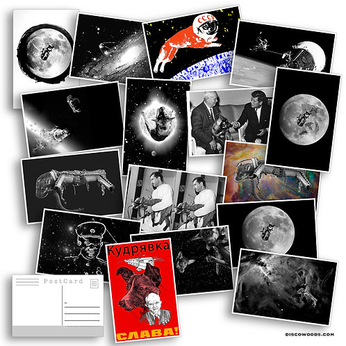 Space Dog Postcard Set - Set of 20 Postcards - Laika the First Dog in Space