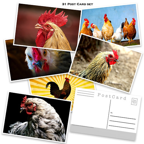 Chickens - Postcard set - 31 post cards - Chicken Art - Scrapbooking