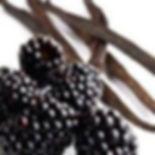 Black Raspberry Vanilla Fragrance.jpg