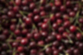 black cherry fragrance.jpg