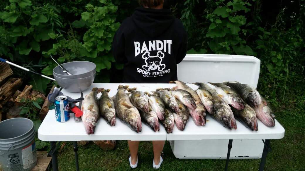 Bandit Sport Fishing Lake Erie