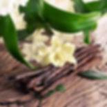 Vanilla Sandalwood fragrance.jpg