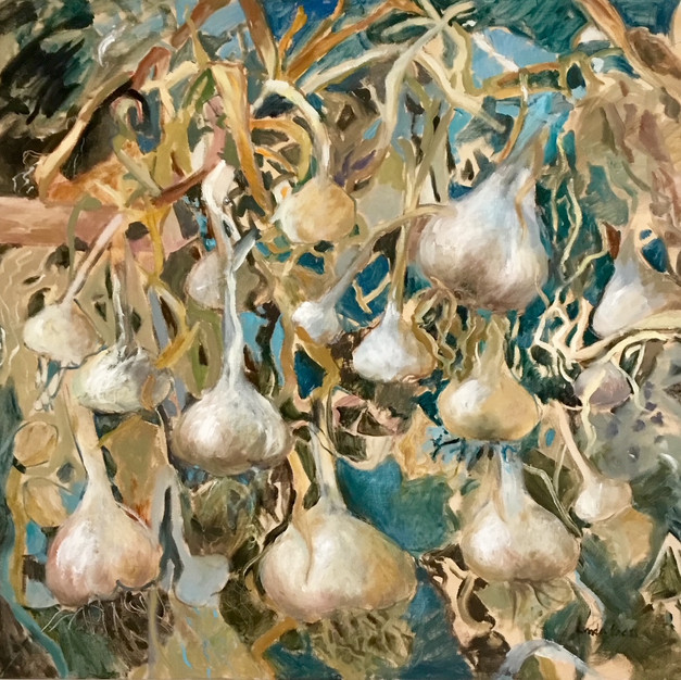 Garlic out to dry
