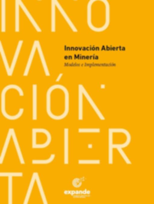 innovacion abierta modelos e implementac