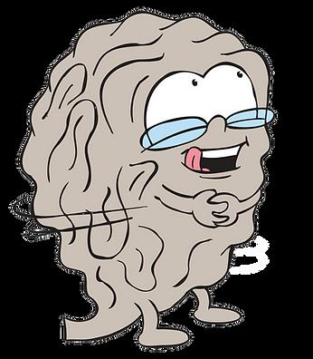 Raymond Brain