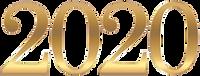 2020v1.png