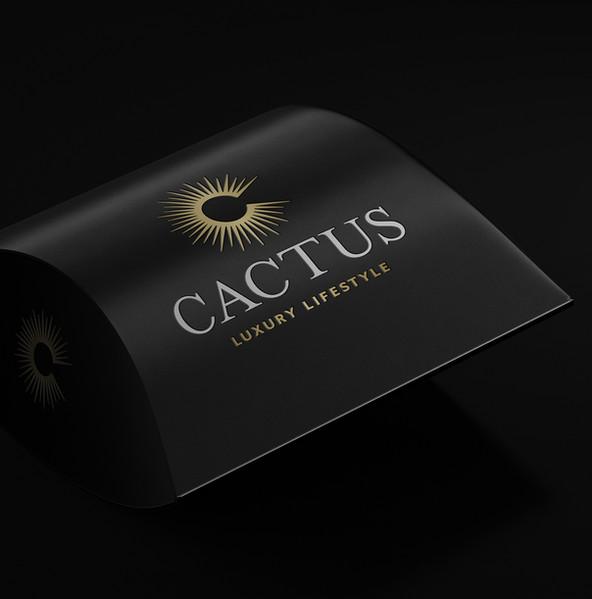 CactusPillowPacks.jpg