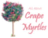 Crape Myrtles.png