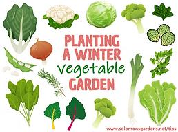 winter vegetable garden.png