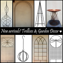 trellises and decor collage.png