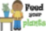 Plant advice Sonora CA