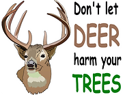 Deer resistant plants Sonora