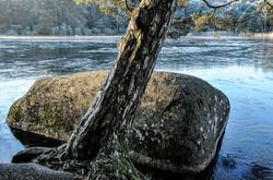 Sidobre Lac du Merle.jpg