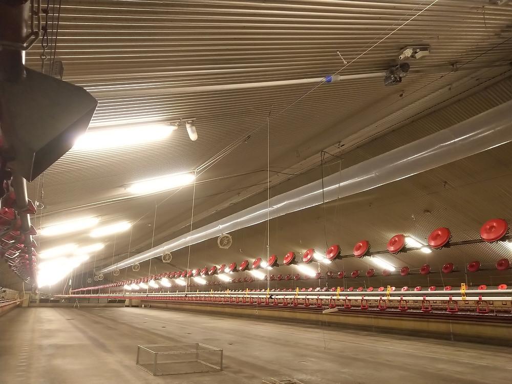 warmtewisselaar uitbreiden met JW ESPO overdrukventilatie systeem in pluimveestall