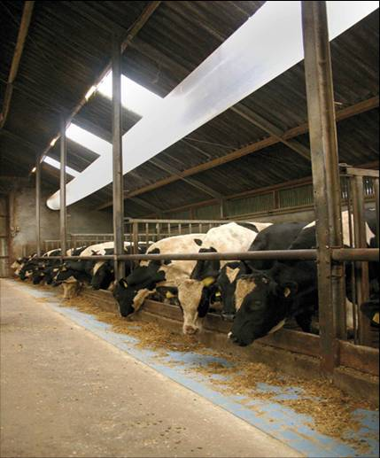 Buisfolie ventilatiesysteem in stal