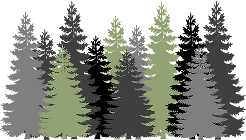 forest-310072_1280.png