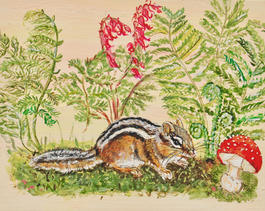 Chipmunk with Fly Agaric,  Dicentra Ferns and Moss on Sunset