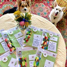 Stitchbook Kits Ready to Go