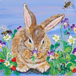 Bunny and The Bees, pansies Violas and Strawberries