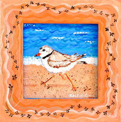 Piping Plover tracks in the Sand 6x6