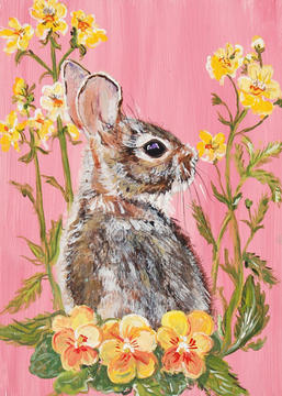 Thoughtful Bunny on Pink with Pansies and primrose