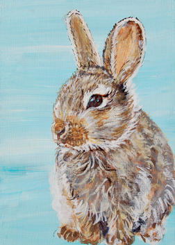 Bunny on Blue - can be customized
