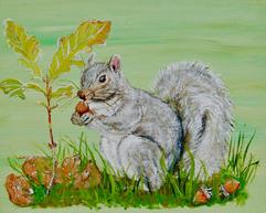 Grey Squirrel with Oak Seedling amd Acorns on Green